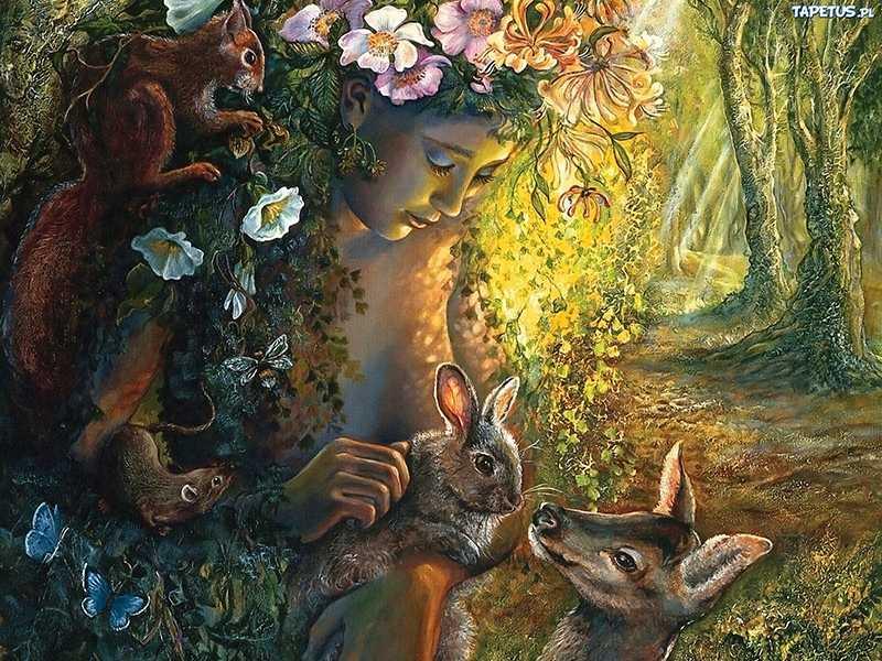 173307 kobieta las zwierzeta