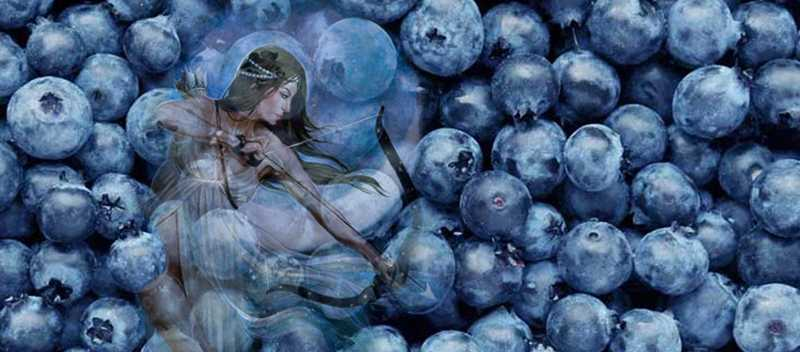 blueberries 1296x728 feature